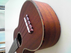 Sh340628